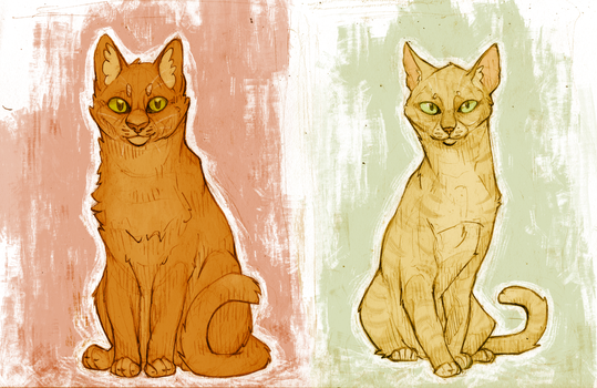 Firestar and Sandstorm Valentines by Boisk