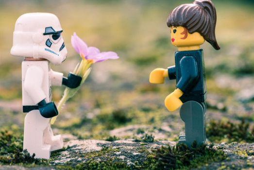 Give you a flower  by ericdufour-Photograp