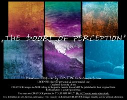 The Doors Of Perception by CD-STOCK by CD-STOCK