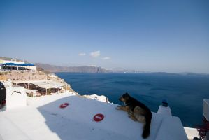 Roof Dog of Eia by mr-lacombe