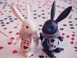 Black and White Rabbits by hiyogon