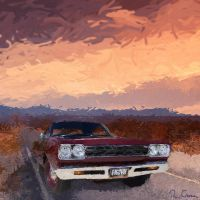 Roadrunner in the Sunset by crossfreak