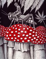 Grasshopper Rider ink pen surreal drawing by Vitogoni