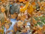 Fall - Childhood Memories by MichelLalonde