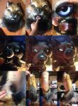 Golden Wolf Partial SOLD by Yuki-Moon