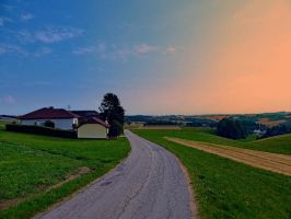 Country road on a summer afternoon II by patrickjobst