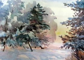 frost and fir-trees by tehub