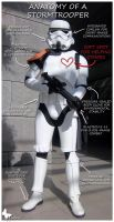 Anatomy of a Stormtrooper by Safiriel