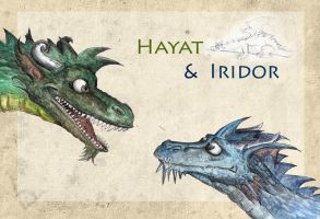 Hayat and Iridor - coloured by Lupuna
