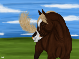 Proud stallion. - Alfahl by Minthiy
