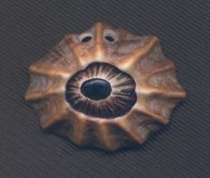 Limpet Eye Pendant 02 by DonSimpson