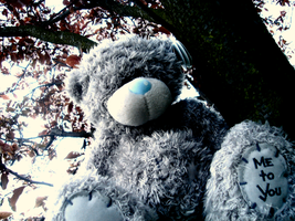 Me to You Bear by Antony99