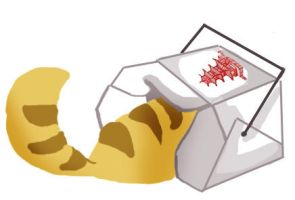 Cat in chinese food box by Lenneth3