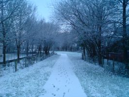 Perspection -Winter- by LordSchmee