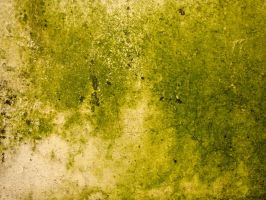 Wall - Texture 15 - by K-RiM-Startimes2
