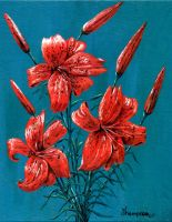 tiger lilies acrylic by simplelines