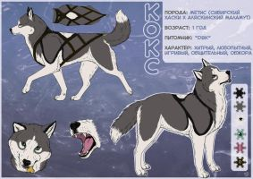 Koks - reference by Do-El