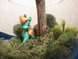 My Little Pony Firecracker Burst Terrarium (close) by BrenlysOddiments