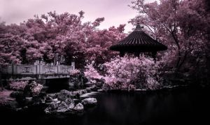 Fukushu-en Garden Naha (Okinawa) - pink dream by Wunderling
