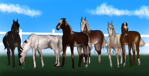Yearling Crew by The-White-Cottage