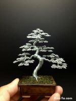 A Large Wire bonsai tree by Ken To by KenToArt