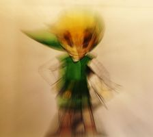 Distorted Wind Waker Link 2 by PhotonicBohemian