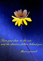 Sunflower quote by April-Mo