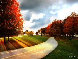Autumn rays by inafas