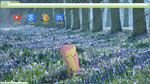 Fluttershy's Nature Google Chrome Theme by bubblehun