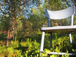 Chair in the woods by CrazyTwinz