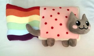 Nyan cat plush by ValkyriaCreations