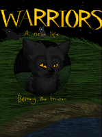 Warriors Fanmade Cover by Silvy-Fret