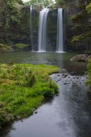 Whangarei Falls by anjules