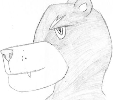 first bear face by sundieu