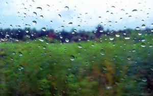 Rainy Day Wallpaper Series 4 out of 7 by MOGGGET