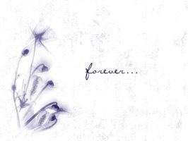forever... by enigmaticdream