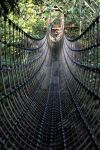 Rope Bridge by WorldII