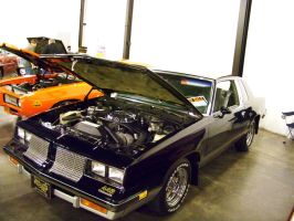 '85 - '86 Olds 442 by DetroitDemigod