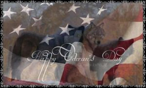 Wolf- Veteran's Day TM2012 by Darkbaby-Original