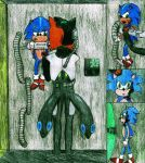 Comm - Assimilating Sonic by Zoe-the-Pink-Ranger