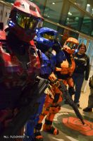 ACEN 2012 - Halo by Havoc-The-Tenrec