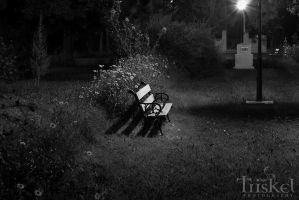 Park's shadows at night by PaulaImperatrix