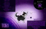 Character Template and Stuff by xXHuskyHurricanesXx