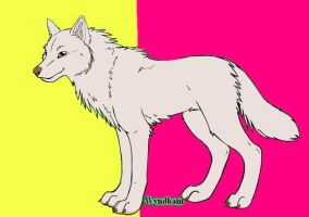 White Dingo by Cool-Ally