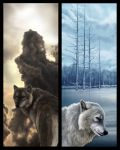 Bookmarks - Moonsong Alphas by MoonsongWolf