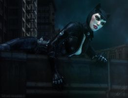 Catwoman 2 by Halli-well