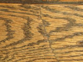 Texture: Wood 004 by VicariousStock