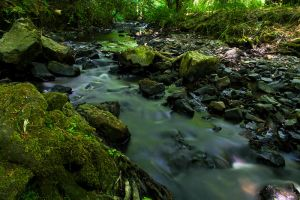 Riverflow by adamlack