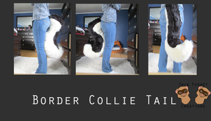 Border collie tail commission by kweeuu