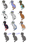 CAT ADOPTS: OPEN by caIicocat